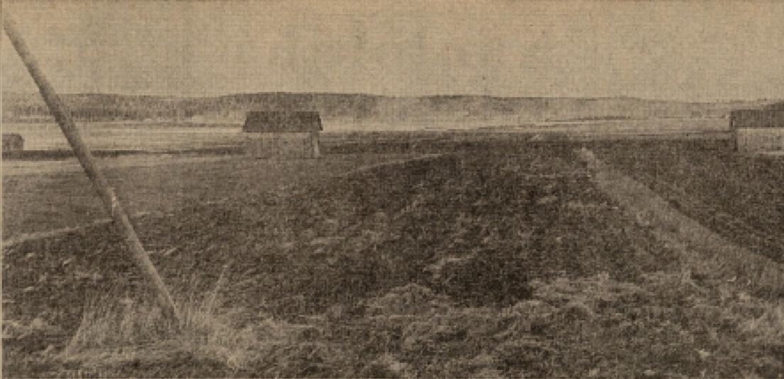 Sääperinjärven alavia rantamaisemia. Kuva: Karjalainen.